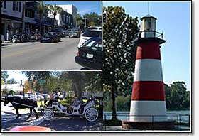 Mount Dora Area Shopping